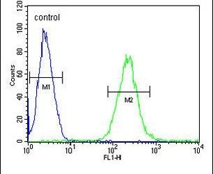 ZNF667 Antibody (PA5-24052) in Flow Cytometry