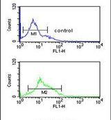 ZO-1 Antibody (PA5-24716) in Flow Cytometry