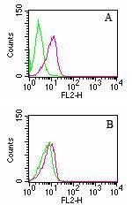 D4-GDI Antibody (MA1-41085) in Flow Cytometry