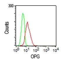 TNFRSF11B Antibody (MA5-15960) in Flow Cytometry