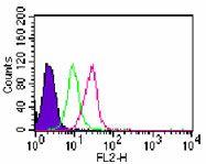 TLR7 Antibody (PA5-23488) in Flow Cytometry