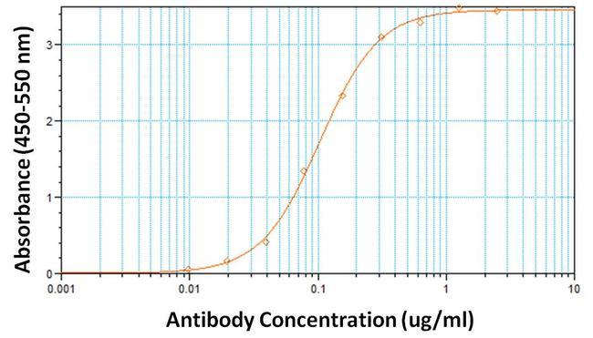 hCG Antibody (MA5-14699) in ELISA