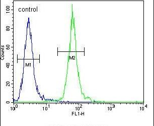 PCDP1 Antibody (PA5-23823) in Flow Cytometry