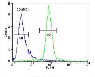 RPEL1 Antibody (PA5-24517) in Flow Cytometry