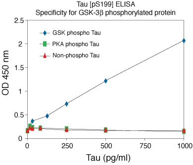 Mouse Tau [pS199] phosphoELISA™. Data show specificity of Mouse Tau [pS199] ELISA for GSK-3 beta phosphorylated recombinant Tau. PKA phosphorylates Tau at the Serine 214 site, and is thus not recognized by this assay. Data show no recognition of non-phosphorylated Tau.