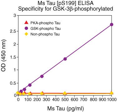 Natural Mouse Tau [pS199] extracted from mouse Neuro 2a cells was serially diluted in Standard Diluent Buffer. The optical density of each dilution was plotted against the standard curve. Parallelism between the natural and recombinant protein is demonstrated in Figure 1 and indicates that the standard accurately reflects natural Mouse Tau [pS199] content in samples.