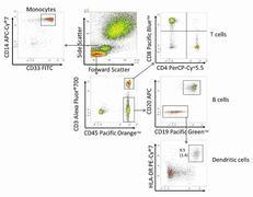 CD3e Antibody (CD0329)