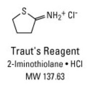 Structure and properties of Traut's Reagent: