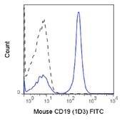 CD19 Antibody (A27070)