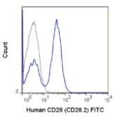 CD28 Antibody (A27072)
