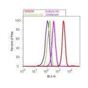 Phospho-p44 MAPK + p42 MAPK pThr202 + pTyr204 Antibody (36-8800)