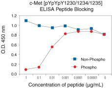 Phospho-c-Met (Tyr1230, Tyr1234, Tyr1235) Antibody (44-888G)
