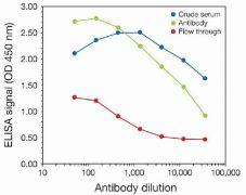 Tri-Methyl-Histone H3 (Lys9) Antibody (49-1008)