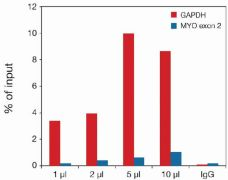 Methyl-Histone H3 (Lys27) Antibody (49-1012)