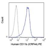 CD11b Antibody (A27085)