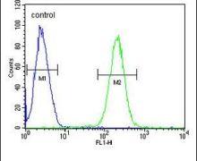 HTR3E Antibody (PA5-24029)