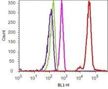 CD62P / P-selectin Antibody (701257) in FACS