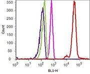 Flow Cytometry analysis of ABfinity™ P-selectin/CD62P Recombinant Rabbit Monoclonal Antibody