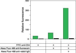 Fluorescein/Oregon Green Antibody (A-11090) in