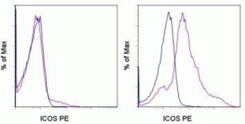 ICOS Antibody (A14767)