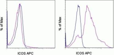 ICOS Antibody (A14773)