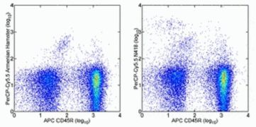 Integrin alpha X / CD11c Antibody (A14788)