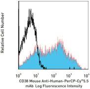 CD38 / cyclic ADP-ribose hydrolase Antibody (A14939)