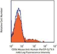 CD56 / NCAM Antibody (A14940)