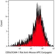 ICAM-1 Antibody (A15396)
