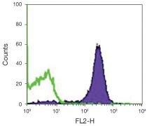 CD2 Antibody (A15824)