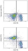 CD40 Antibody (A16190)