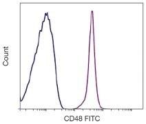 CD48 Antibody (A16314)