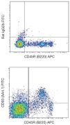 CD93 / C1qR Antibody (A16380)