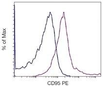 FAS Antibody (A16388)