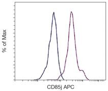 CD85 Antibody (A16418)