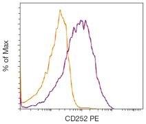 CD134L / OX40L Antibody (A18378)