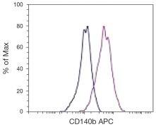 PDGFRB Antibody (A18383)