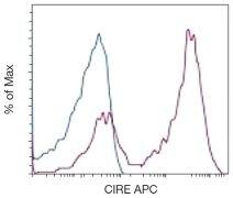 DC-SIGN Antibody (A18391)