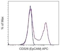 EpCAM Antibody (A18443)