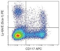 Ly-6A/E Antibody (A18486)