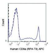 CD8 alpha Antibody (A18611)