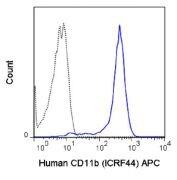 CD11b Antibody (A18613)