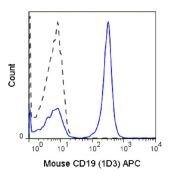 CD19 Antibody (A18614)