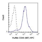CD44 Antibody (A18617)
