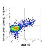 CD357 / GITR Antibody (A18630)