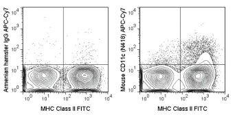 Integrin alpha X / CD11c Antibody (A18639)