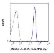 CD45.2 / Ly5.2 Antibody (A18642)