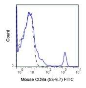 CD8 alpha Antibody (A18649)