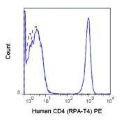 CD4 Antibody (A18669)