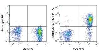 IL-7 Receptor alpha / IL7R Antibody (A18684)